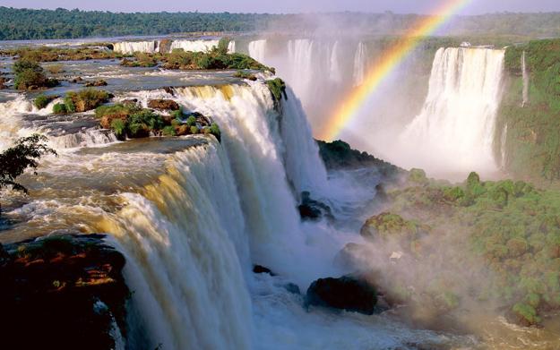 rainbow_vegetation