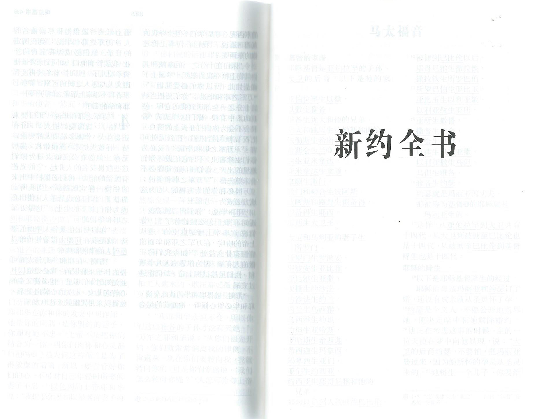 Chinesische_Bibel_5