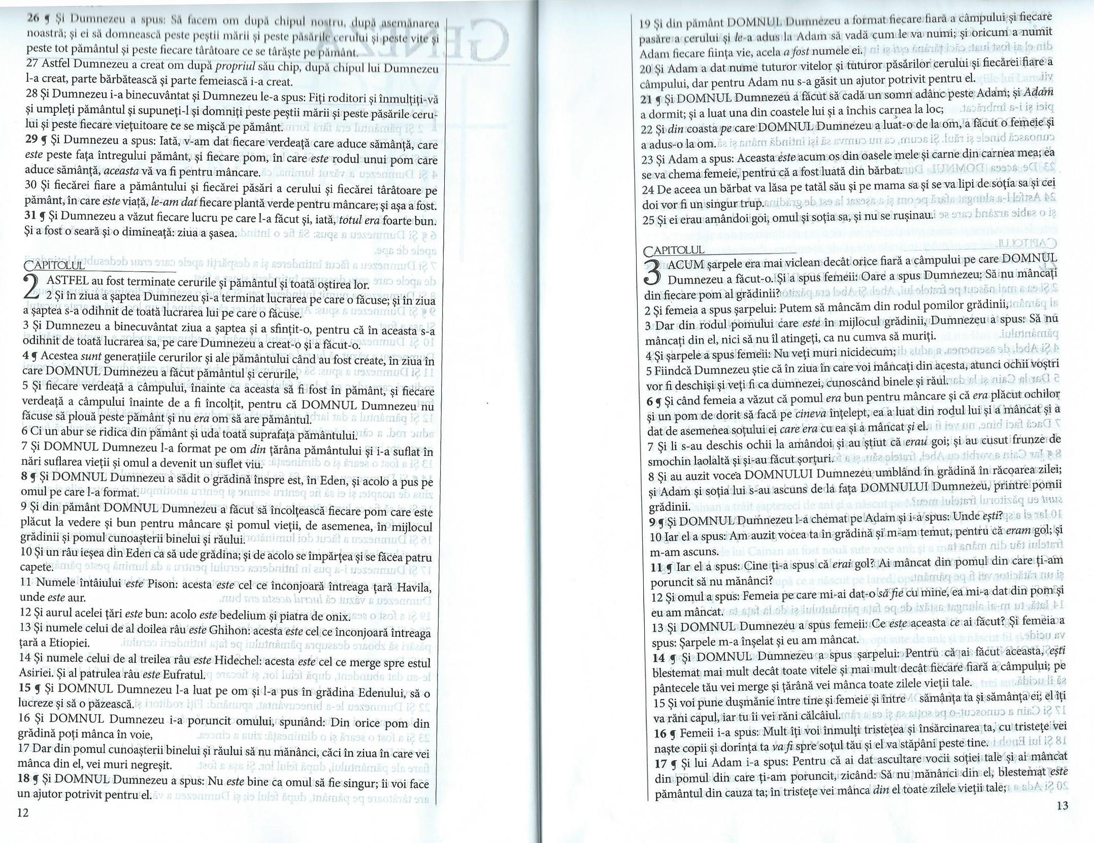 Rumänische_Bibel_4
