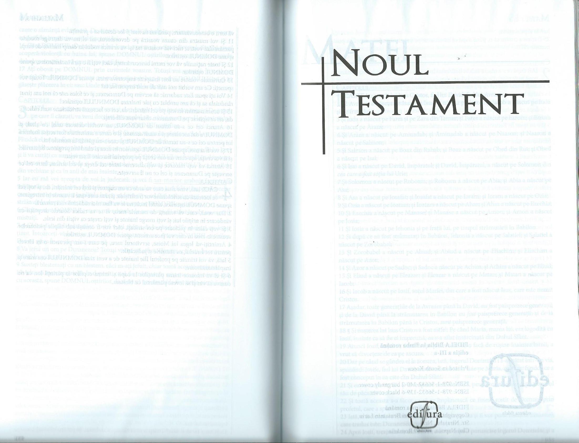 Rumänische_Bibel_6