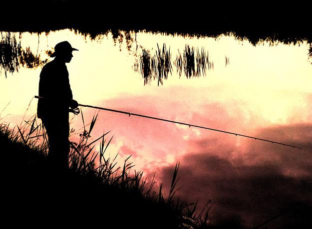 Angler-Fisch
