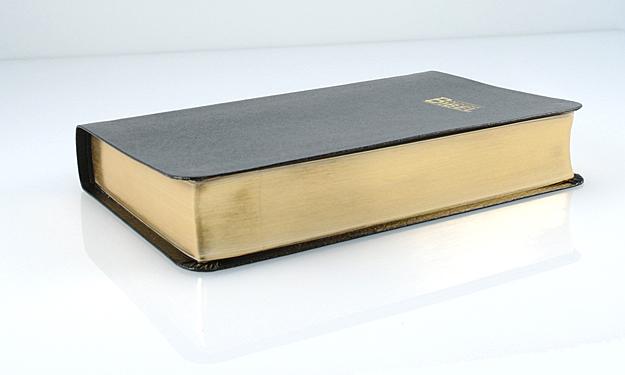 Bibel_allein