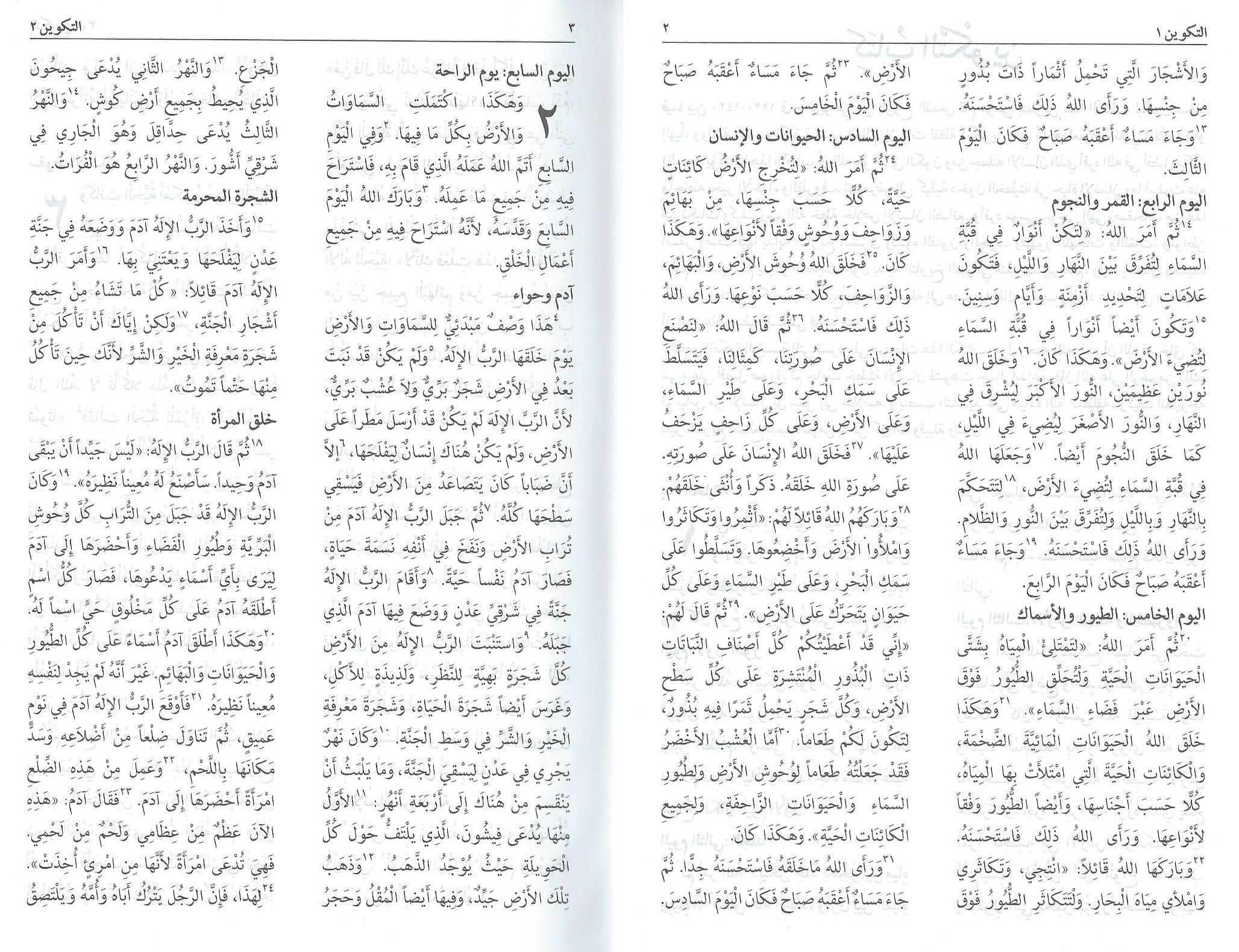 Arabische_Bibel_03