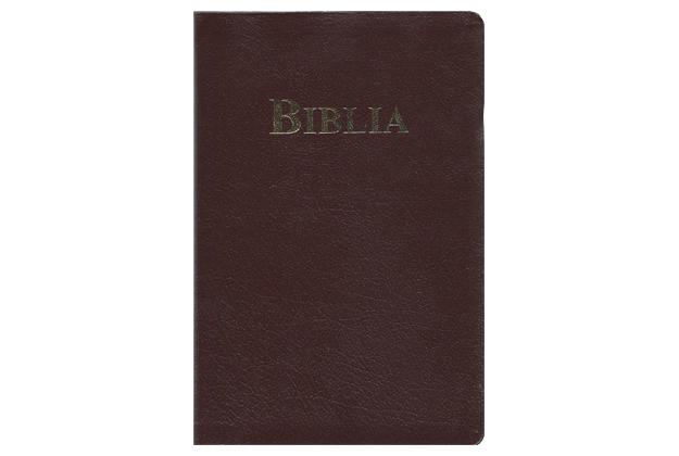 Rumänische_Bibel_1