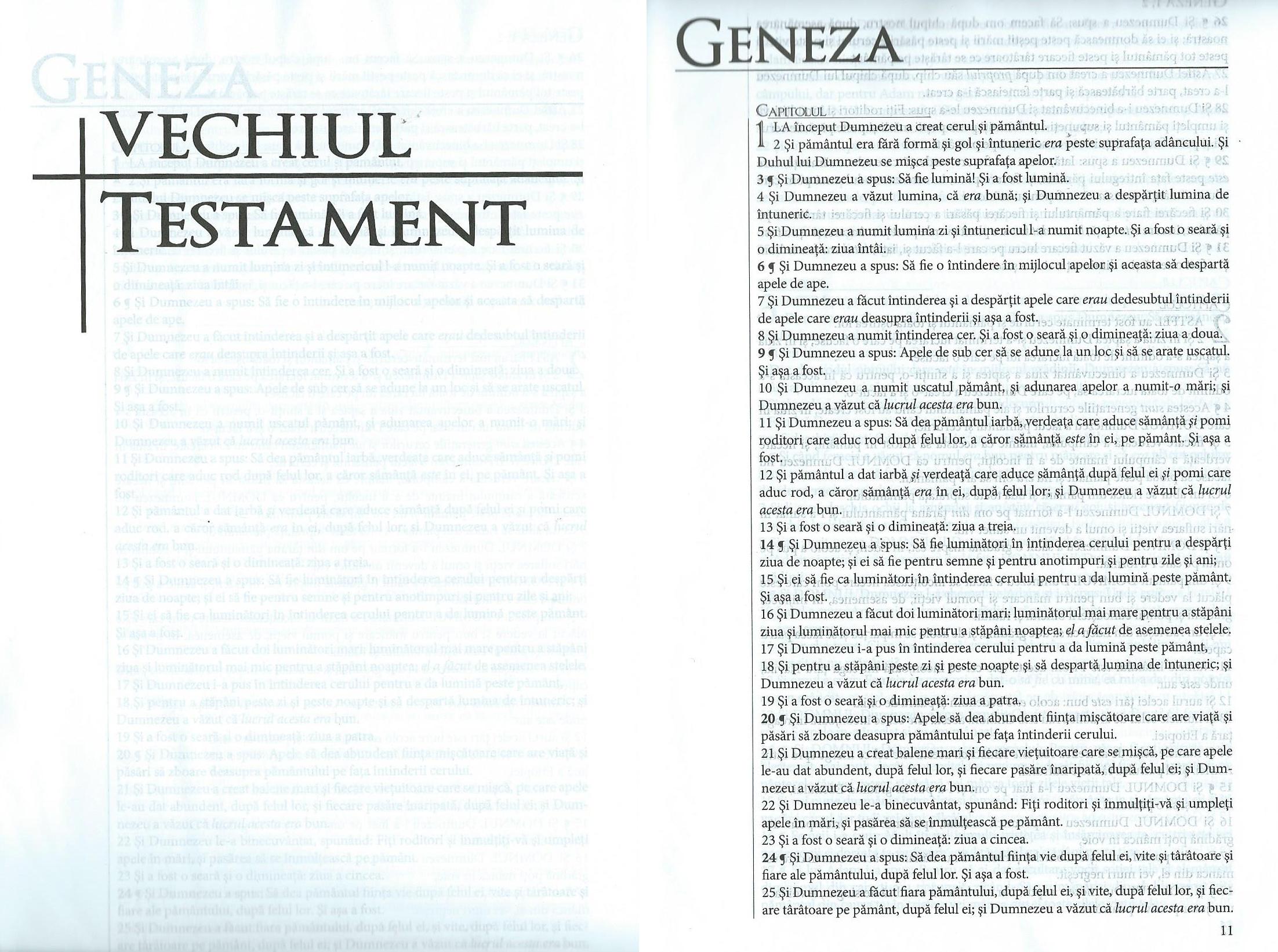 Rumänische_Bibel_3