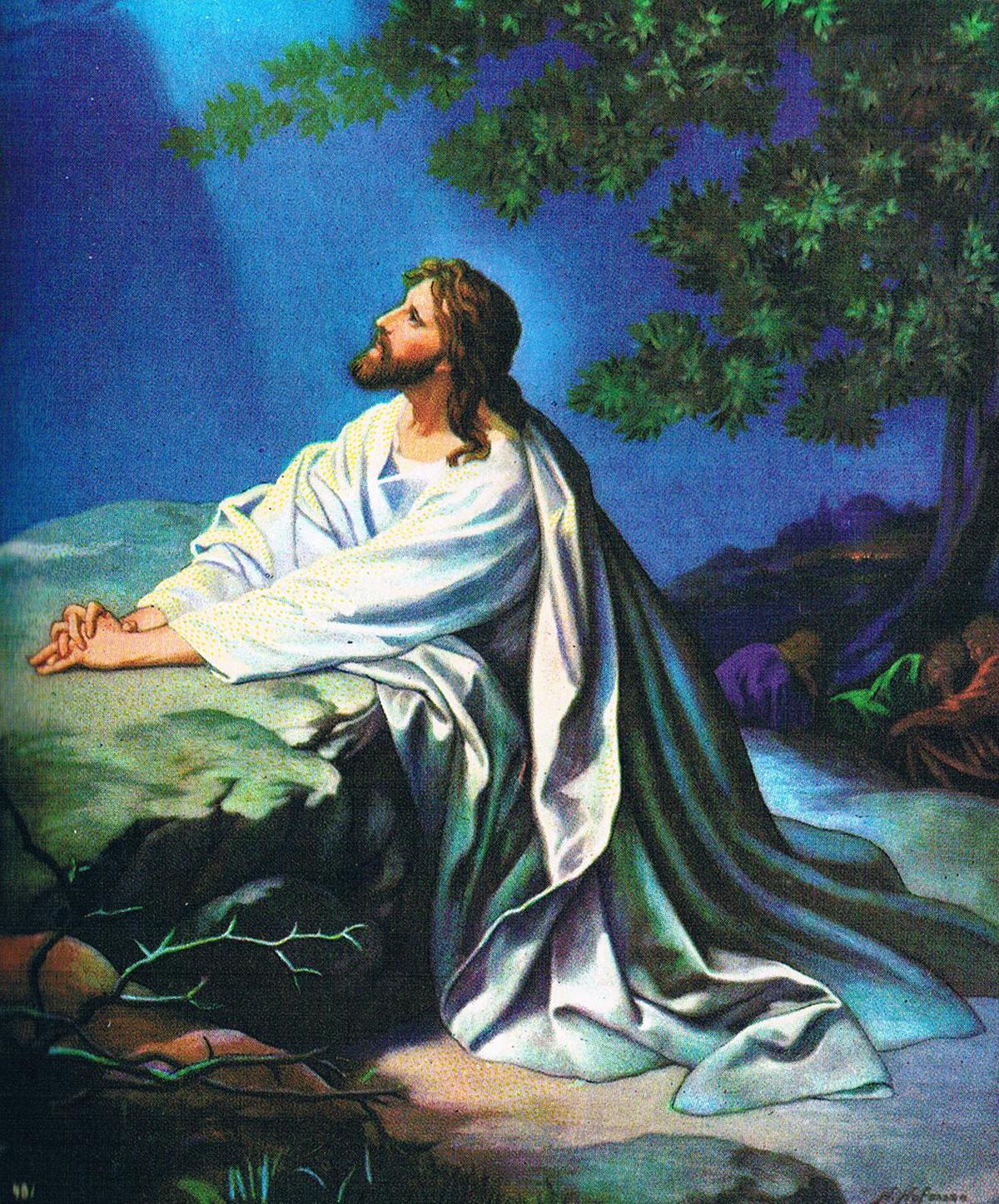 Garden Jesus Im Garten Gethsemane