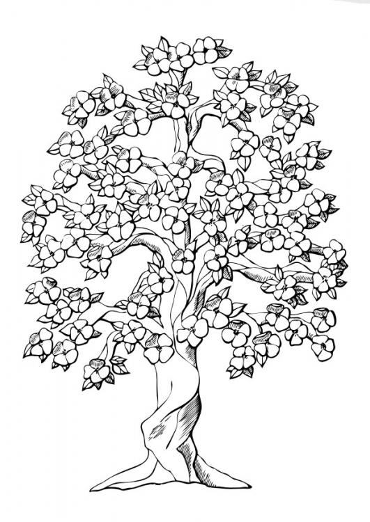 Der Baum Des Lebens Zeltmacher
